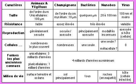 bacterie taille