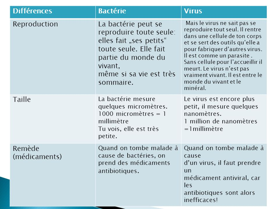 difference entre bacterie et virus