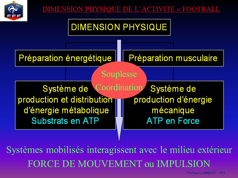 dimension physique